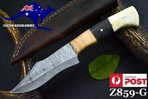 Custom Hand forged Damascus Steel Hunting Knife,Camel Bone & Olive  (Z859-G)