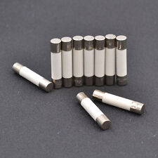 10 Pcs Microwave Ceramic Fuse Electric 20A 250V Home Supplies DIY 6x30mm