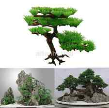 Green Stand Plant Tree Aquarium Ornament Fish Tank Decor Bonsai Rockery Parts UK