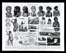 1874 Anthropology Print Indigenous Aborigine Culture Australia Tasmania Ethnic