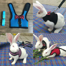 Black Adjustable Soft Harness with Elastic Leash for Rabbit Bunny Puppy Hamster*