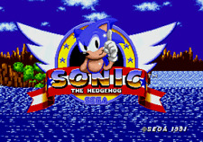 Sonic The Hedgehog - Sega Genesis Game Complete