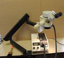 Leica Wild MZ6 microscopio professionale + KL1500LCD
