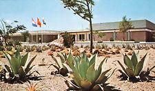 Flamboyant Beach Hotel Caribbean Curacao Postcard Cactus Architecture