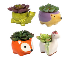 """Cute Animal Succulent Plants Pot Ceramic Planter Home Garden Decor 5"""" Colors New"""