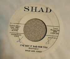 Jerry & Brad ~ The People Hater / I've Got It Bad For You ~ Promo - RARE ROCK