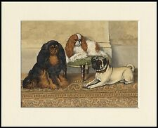 KING CHARLES ENGLISH TOY SPANIEL DOGS AND PUG DOG PRINT MOUNTED READY TO FRAME