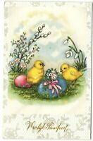 2 Easter chicks watching  eggs with ribbon postcard