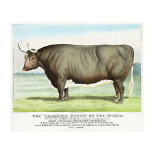 Champion Steer of the World Deco FRIDGE MAGNET, 1877 Currier & Ives Ox Cow