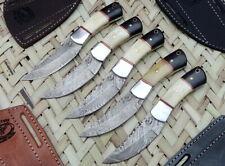 """Lot of 5 Custom Handmade Damascus Steel 6"""" Hunting Knife Bone + B.Horn Handles"""