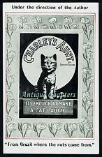 c1908 Charley's Aunt Castle Theatre Richmond Enough To Make A Cat Laugh Postcard