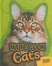Maine Coon Cats All About Cats