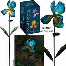 Blue Iris Fiore Solare Luce Giardino Paletto Creekwood Regal Art & Gift Boxed