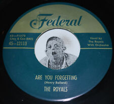 """R&B 45~THE ROYALS~Are You Forgetting / What Did I Do~Federal 70s Repro CLEAN 7"""""""