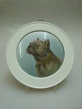 Rosenthal? PIASTRA MURO CANI motivo padrino sur padrino qualità Dog porcelain