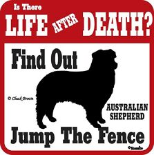 Australian Shepherd Life After Death Funny Warning Sign
