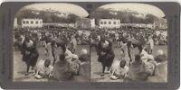 Tangeri Marché Marocco Fotografia Vintage Stereo Stereoview