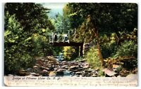 Early 1900s Bridge at Oliverea Ulster Co, NY Postcard