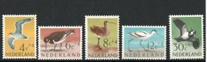 NETHERLANDS SG907-911 BEACH AND MEADOW BIRDS  1961 MNH