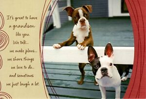 Happy Birthday Grandson Boxer Puppies Dog Hallmark Greeting Card