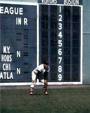Boston Red Sox CARL YASTRZEMSKI Glossy 8x10 Photo Left Field Print Poster