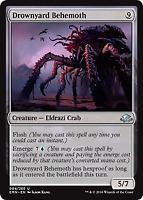 Drownyard Behemoth (004) Eldritch Moon Mtg x4 4x EMN Magic