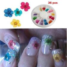 36pcs Dried Tips Nail Art Sticker 3d Flower Diy Decoration