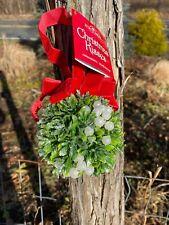 """New Kurt Adler 3.5"""" Christmas Kissing Ball/Kisses Ornament-Mistletoe-White Berry"""