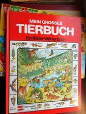 Bilderbücher als gebundene Erstausgabe für 9-12 Jahre