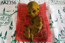 Voodoo Doll Skull Skeleto Ritual Big Head Kuman Thong Thai Doll Amulet #2356ar
