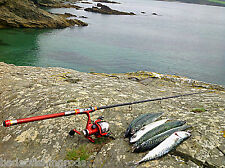 CANNA da spiaggia mare Canna da Pesca Acqua Salata Rod Filatura Rod Bass Canna da Pesca Sgombri Rod