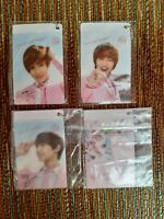 SHINee Etude 3 Official Photocard Holders Plus 1 Group Onew Minho Taemin  🇺🇲