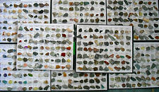 Large Rocks & Minerals Collection 1200 pieces
