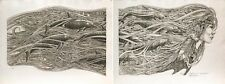 J. D. Mayhew Limited Edition Engraving - Dolphins on My Mind (2 Prints)