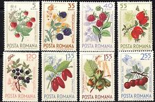 Romania 1964 Forest Fruits Complete Set of Stamps MNH