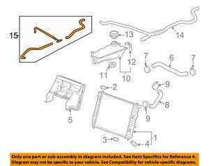 Chevrolet GM OEM 05-13 Corvette Radiator-Upper Inlet Hose 10305352