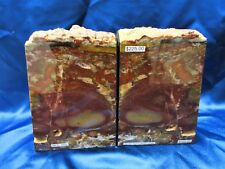 Petrified Wood Bookends from Madras, Oregon - rock - collectible