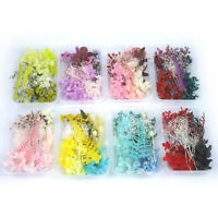 1Box Dried Flower Dry Plants For Aromatherapy Candle Making DIY Accessories YK