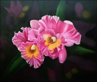 Quality Hand Painted Oil Painting Two-Tone Orchids 20x24in
