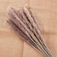 Natural Dried Flower Pampas Bunch Grass Reed Home Wedding Party Decor 15X