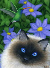 Himalayan ragdoll cat hummingbird garden limited edition aceo print painting art