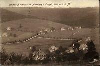 Rehefeld Zaunhaus bei Altenberg im Erzgebirge s/w AK 1927 gelaufen Gesamtansicht