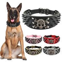 Hundehalsband Nietenhalsband Mit Schädel Hunde Halsband Lederhalsband Breit Groß