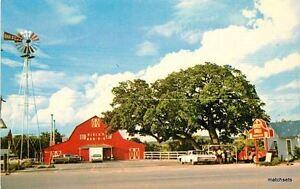 1960s Barbecue Birck's Roadside Fredericksburg Texas Whalley postcard 11434