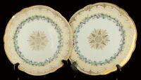 """Antique Nouveau Sevres Porcelain Purple Iris Flower Gilded Plates Pair France 9"""""""