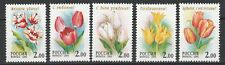 Russia 2001 Flowers 5 MNH Stamps