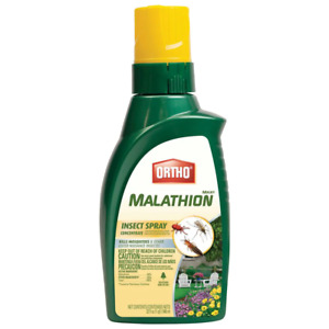 MAX Malathion 32 oz. Insect Spray Concentrate Easy To Apply For Outdoor Use Only