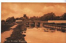 Bedfordshire Postcard - River Bridge - Biggleswade    MB1842