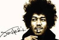 Jimi Hendrix Signature Blechschild Schild gewölbt Metal Tin Sign 20 x 30 cm
