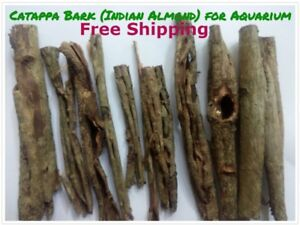 Catappa Bark Indian Almond for Aquarium Water PH Control & Hiding Place for Fish